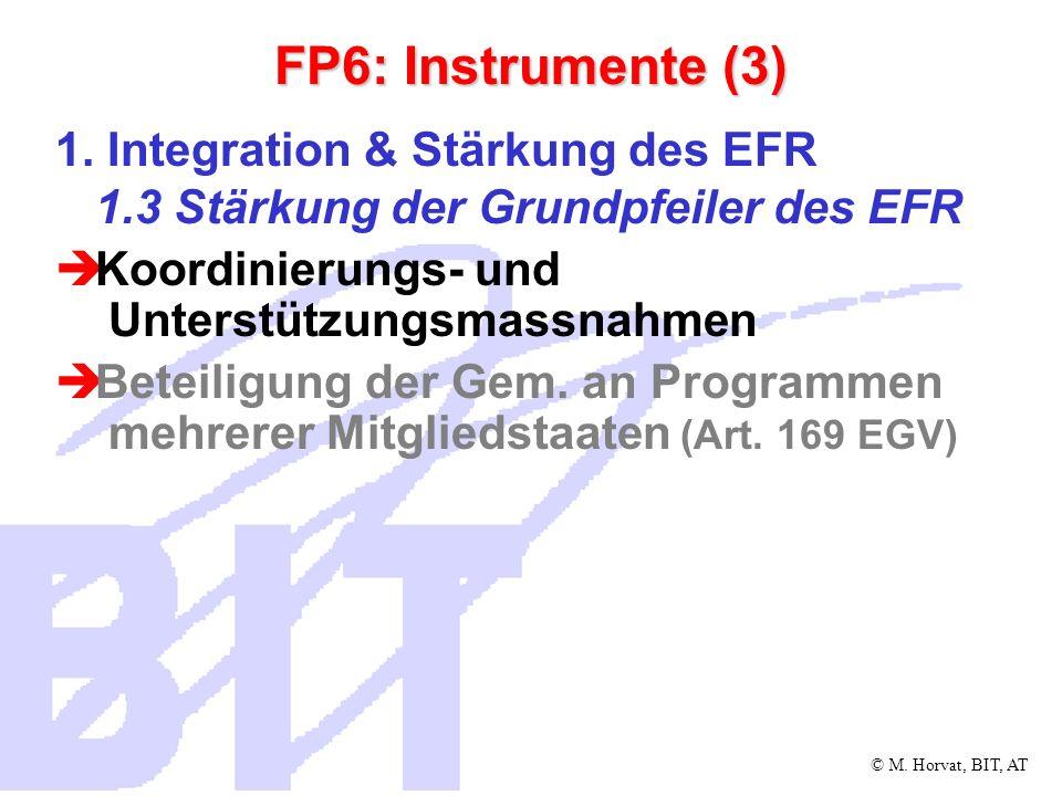 © M.Horvat, BIT, AT FP6: Instrumente (4) 2.