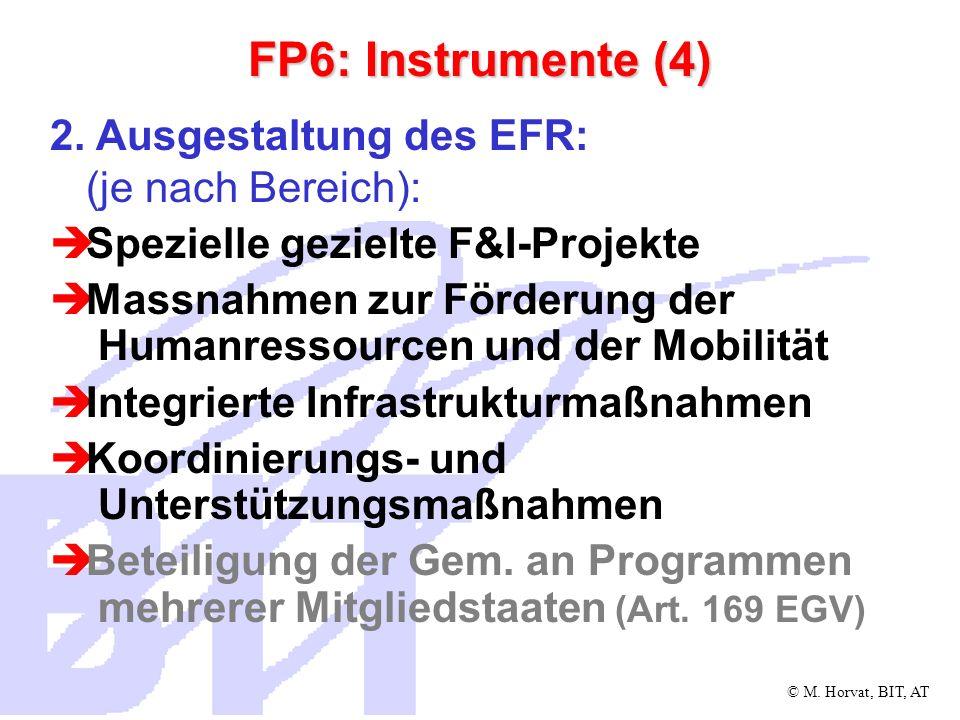 © M. Horvat, BIT, AT FP6: Instrumente (4) 2. Ausgestaltung des EFR: (je nach Bereich): Spezielle gezielte F&I-Projekte Massnahmen zur Förderung der Hu