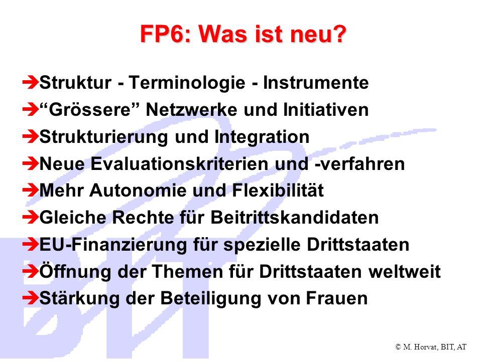 © M. Horvat, BIT, AT FP6: Was ist neu? Struktur - Terminologie - Instrumente Grössere Netzwerke und Initiativen Strukturierung und Integration Neue Ev