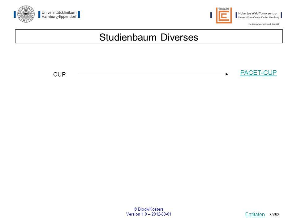 © Block/Kösters Version 1.0 – 2012-03-01 85/98 Studienbaum Diverses Entitäten CUP PACET-CUP