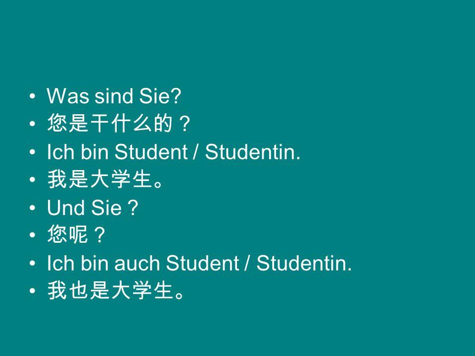 Was sind Sie? Ich bin Student / Studentin. Und Sie ? Ich bin auch Student / Studentin.