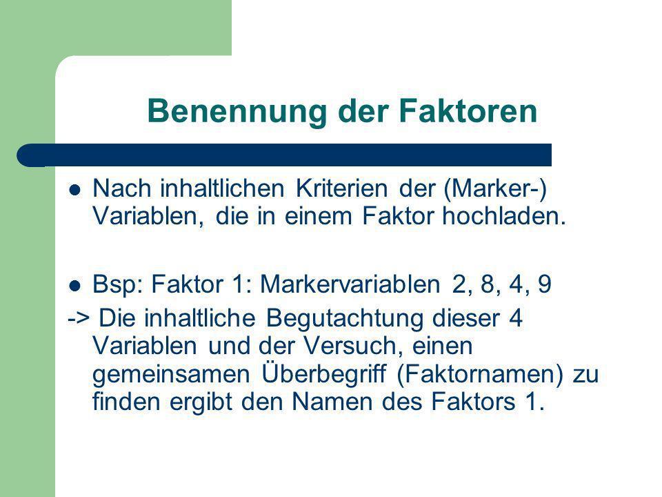 Benennung der Faktoren Nach inhaltlichen Kriterien der (Marker-) Variablen, die in einem Faktor hochladen. Bsp: Faktor 1: Markervariablen 2, 8, 4, 9 -