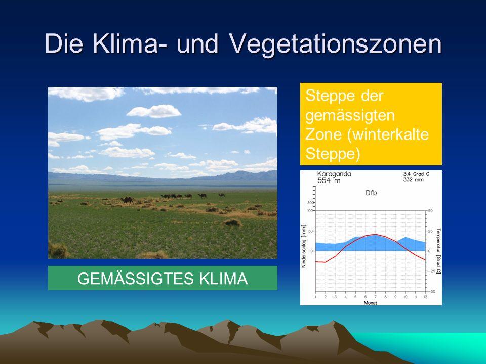 Die Klima- und Vegetationszonen GEMÄSSIGTES KLIMA Steppe der gemässigten Zone (winterkalte Steppe)