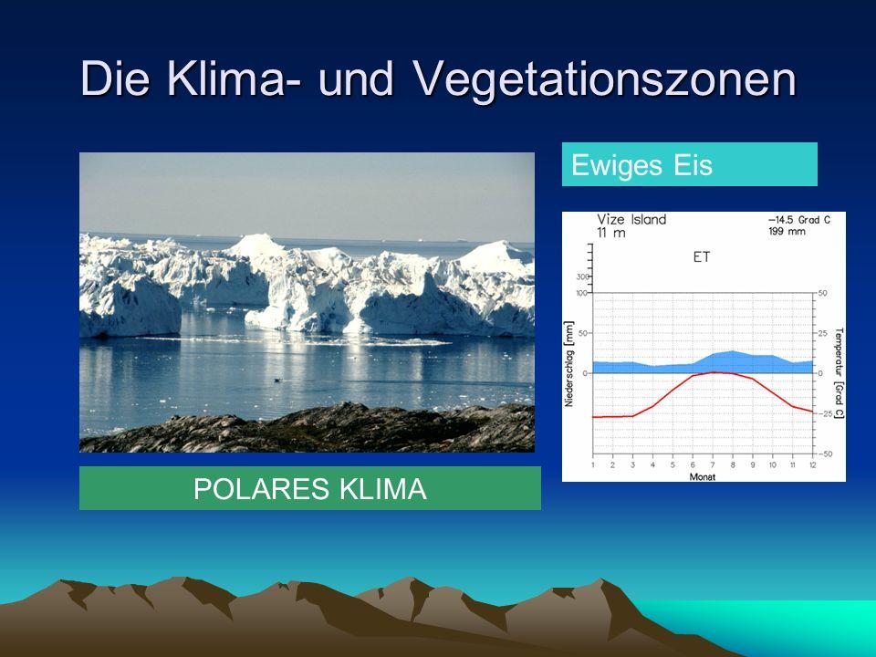 Die Klima- und Vegetationszonen POLARES KLIMA Ewiges Eis