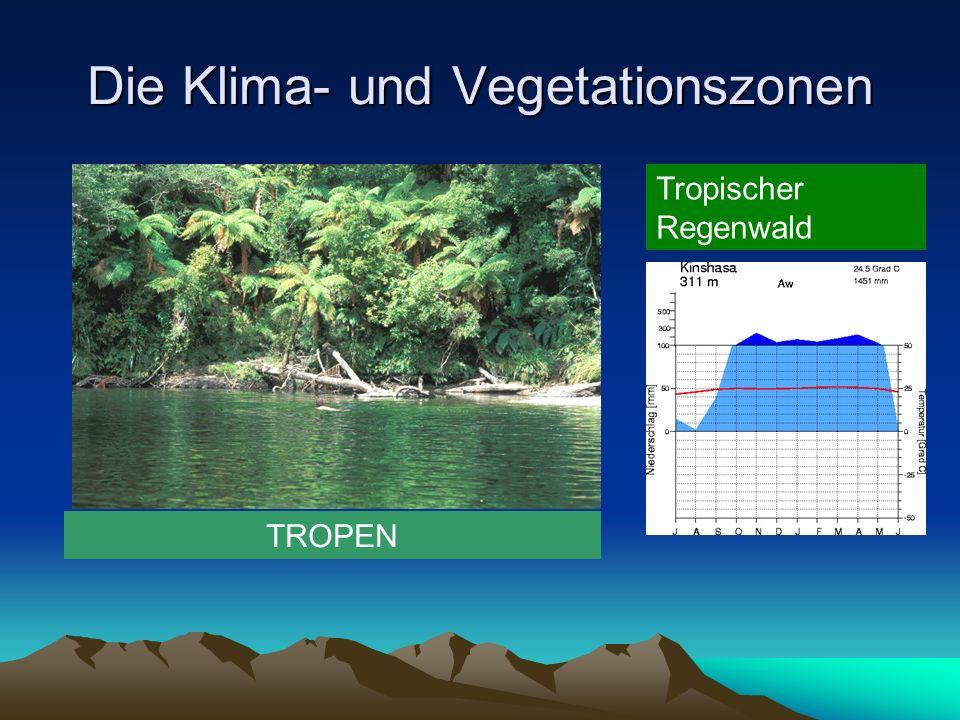 Die Klima- und Vegetationszonen GEMÄSSIGTES KLIMA Wüste der gemässigten Zone (winterkalte Wüste)