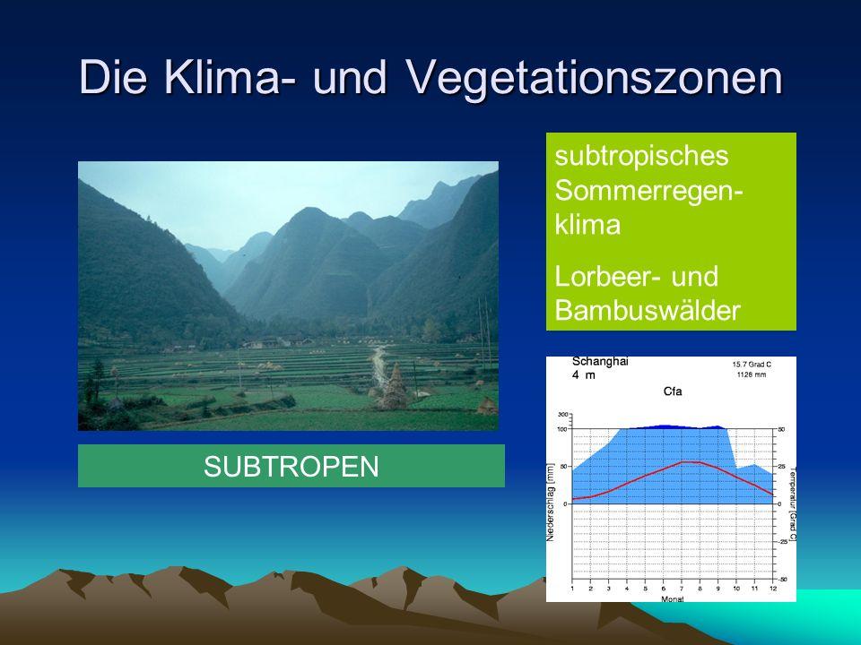 Die Klima- und Vegetationszonen GEMÄSSIGTES KLIMA Feucht- gemässigtes Klima (ozeanisch) Atlantische Heide