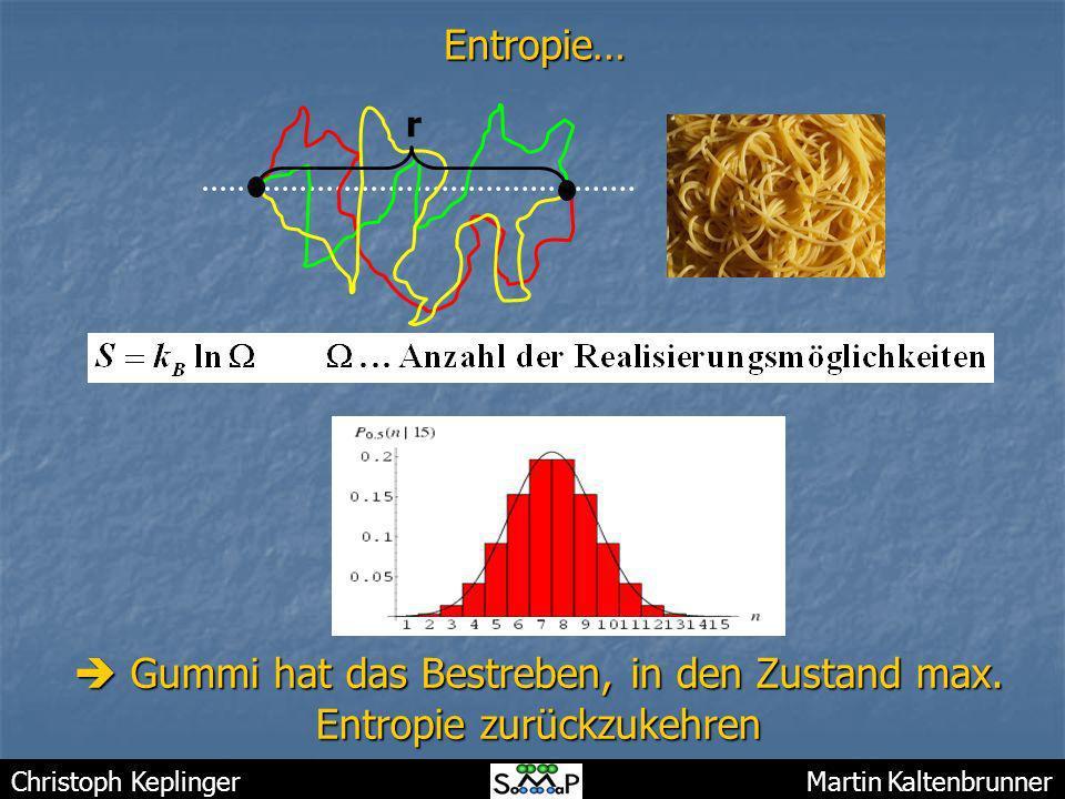 Christoph Keplinger Martin KaltenbrunnerEntropie… Gummi hat das Bestreben, in den Zustand max. Entropie zurückzukehren Gummi hat das Bestreben, in den