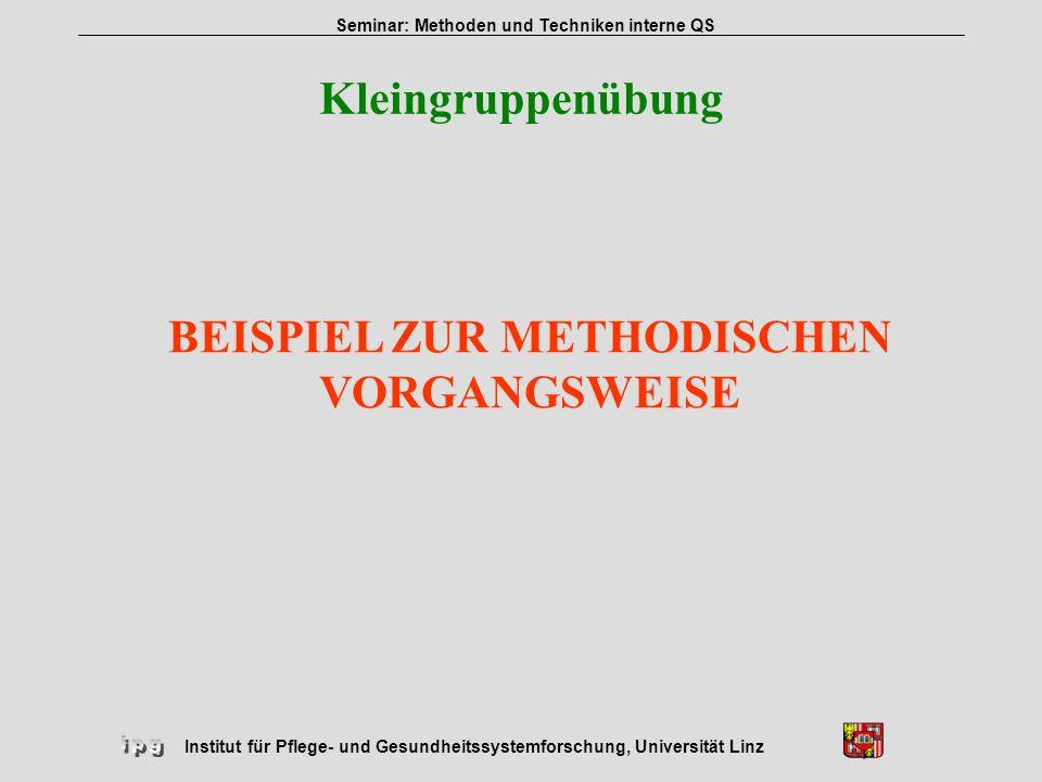 Institut für Pflege- und Gesundheitssystemforschung, Universität Linz Seminar: Methoden und Techniken interne QS Kleingruppenübung BEISPIEL ZUR METHOD