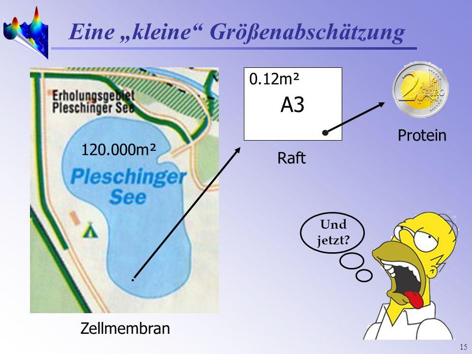 15 Eine kleine Größenabschätzung Zellmembran Und jetzt? 120.000m² A3 Raft 0.12m² Protein