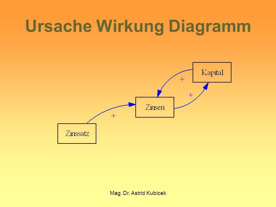 Mag. Dr. Astrid Kubicek Ursache Wirkung Diagramm