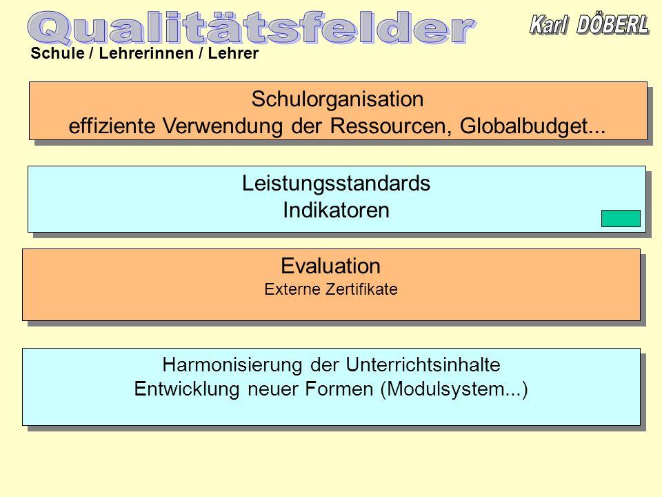 Schule / Lehrerinnen / Lehrer Leistungsstandards Indikatoren Leistungsstandards Indikatoren Schulorganisation effiziente Verwendung der Ressourcen, Gl