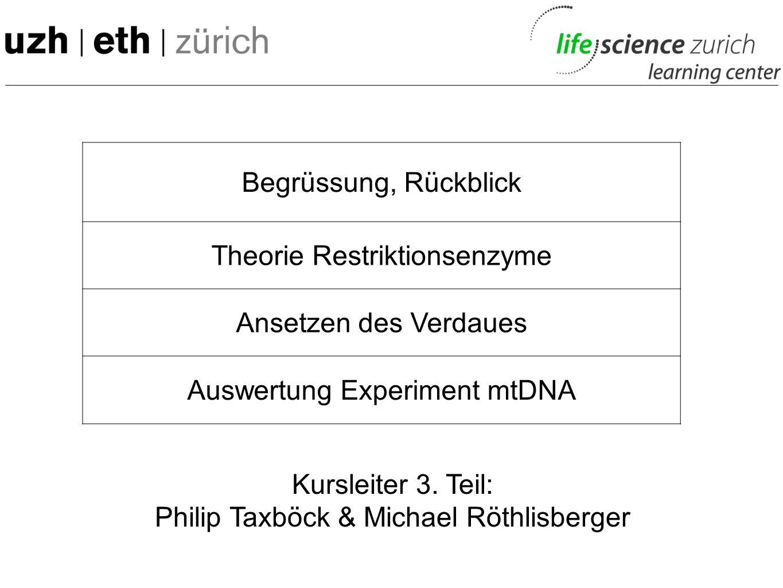 Begrüssung, Rückblick Theorie Restriktionsenzyme Ansetzen des Verdaues Auswertung Experiment mtDNA Kursleiter 3.