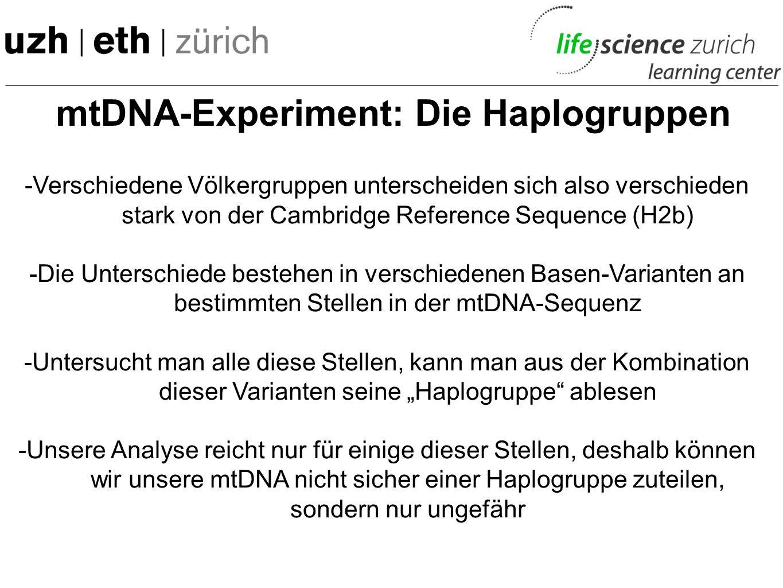 mtDNA-Experiment: Völkerwanderung Zwischen 40% und 60% der Europäer (sowie auch die CRS) gehören einer Haplotyp H Subklasse an.