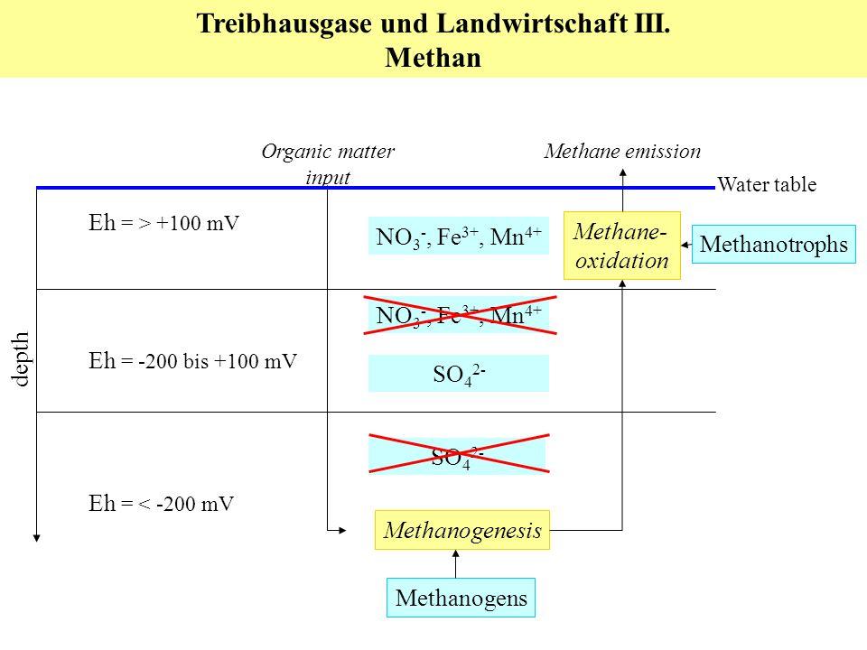 Treibhausgase und Landwirtschaft III. Methan Eh = -200 bis +100 mV Eh = < -200 mV Eh = > +100 mV Methanogenesis Organic matter input SO 4 2- NO 3 -, F