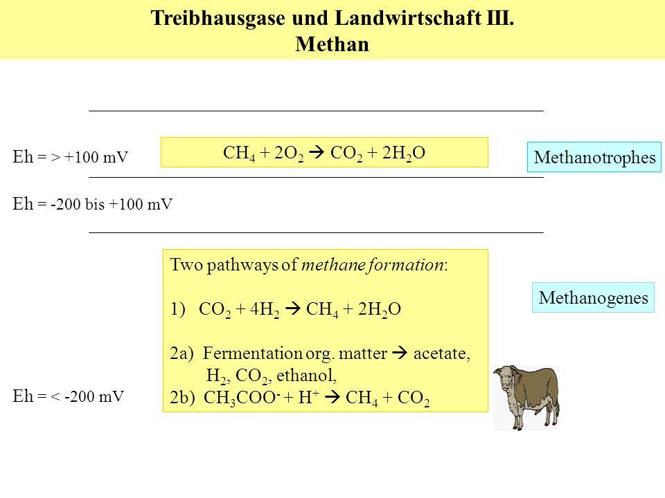 Eh = -200 bis +100 mV Eh = < -200 mV Eh = > +100 mV Two pathways of methane formation: 1) CO 2 + 4H 2 CH 4 + 2H 2 O 2a) Fermentation org.