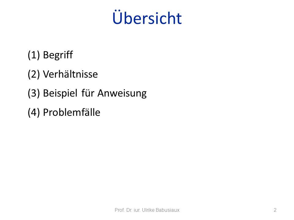 (1) Begriff (2) Verhältnisse (3) Beispiel für Anweisung (4) Problemfälle Prof. Dr. iur. Ulrike Babusiaux2 Übersicht