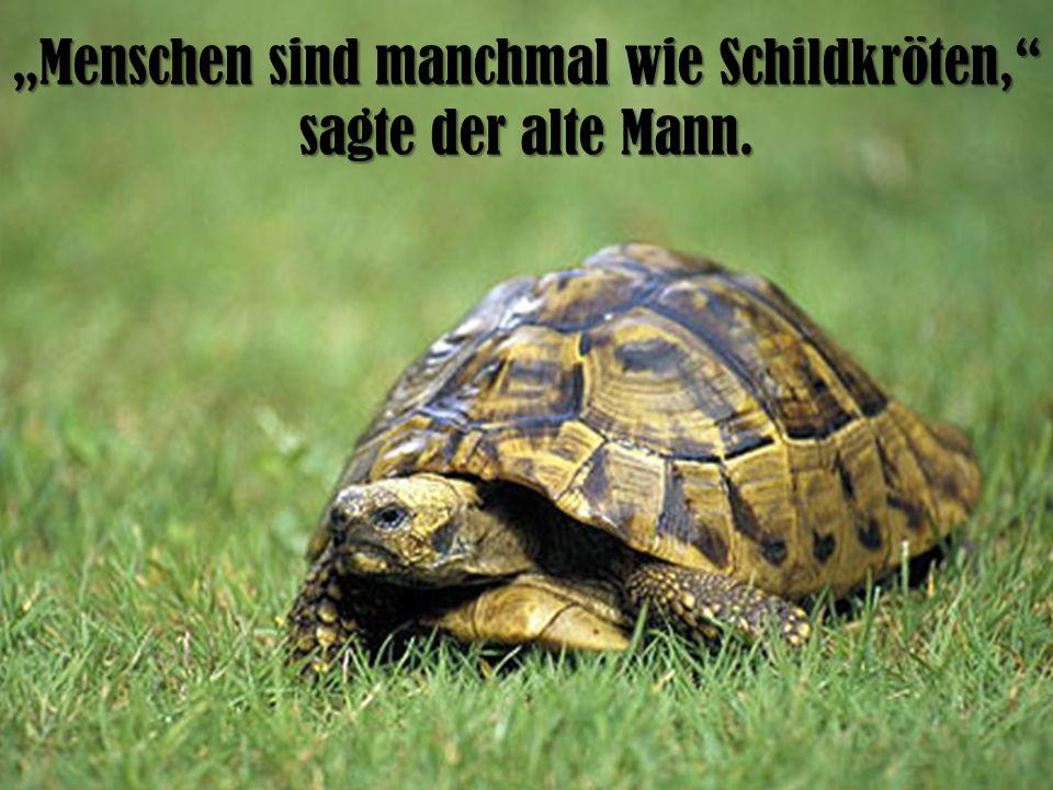 Menschen sind manchmal wie Schildkröten, sagte der alte Mann.