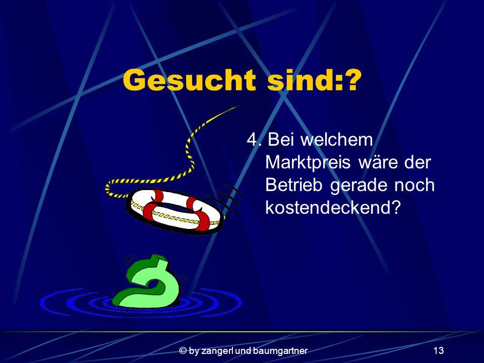 © by zangerl und baumgartner12 Gesucht sind:. 3.