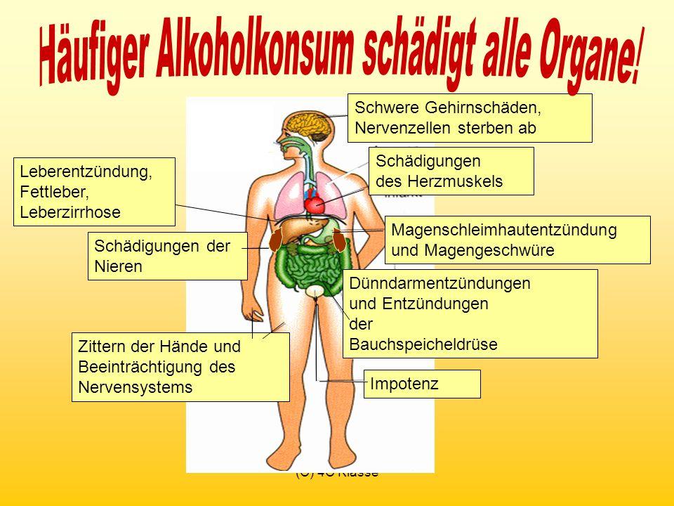 (C) 4C Klasse Schwere Gehirnschäden, Nervenzellen sterben ab Schädigungen des Herzmuskels Leberentzündung, Fettleber, Leberzirrhose Magenschleimhautentzündung und Magengeschwüre Dünndarmentzündungen und Entzündungen der Bauchspeicheldrüse Impotenz Schädigungen der Nieren Zittern der Hände und Beeinträchtigung des Nervensystems