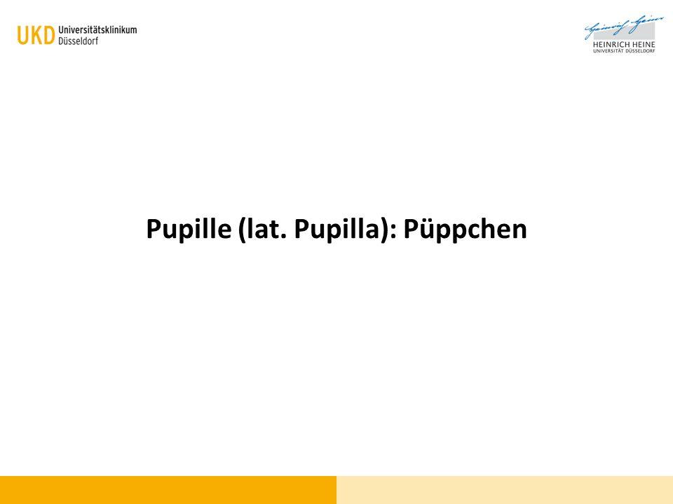 Pupille (lat. Pupilla): Püppchen