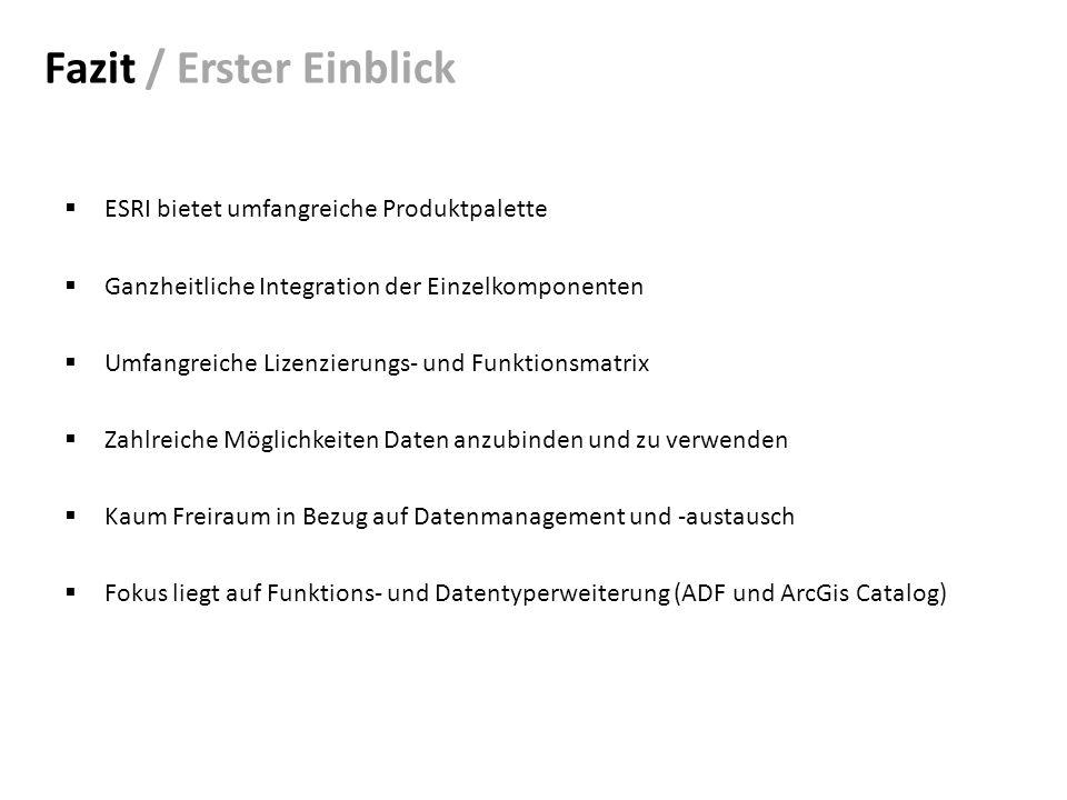 Fazit / Erster Einblick ESRI bietet umfangreiche Produktpalette Ganzheitliche Integration der Einzelkomponenten Umfangreiche Lizenzierungs- und Funktionsmatrix Zahlreiche Möglichkeiten Daten anzubinden und zu verwenden Kaum Freiraum in Bezug auf Datenmanagement und -austausch Fokus liegt auf Funktions- und Datentyperweiterung (ADF und ArcGis Catalog)