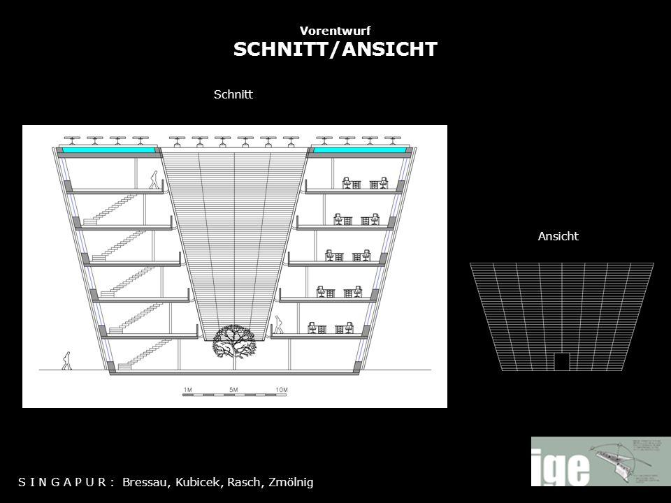 Vorentwurf SCHNITT/ANSICHT S I N G A P U R : Bressau, Kubicek, Rasch, Zmölnig Ansicht Schnitt