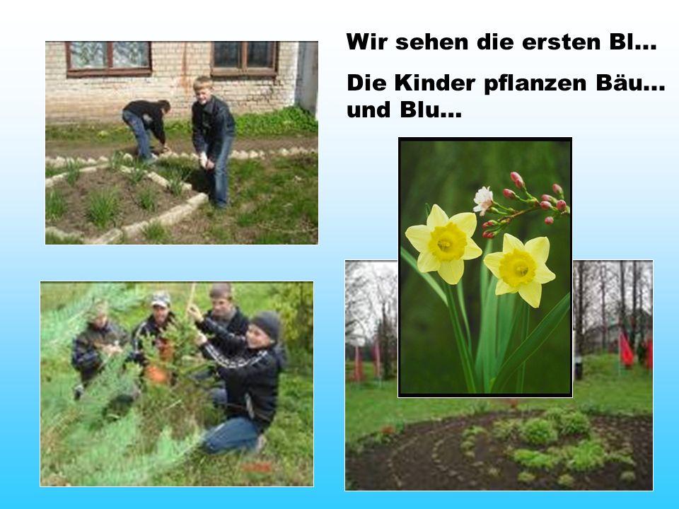 Wir sehen die ersten Bl... Die Kinder pflanzen Bäu... und Blu…