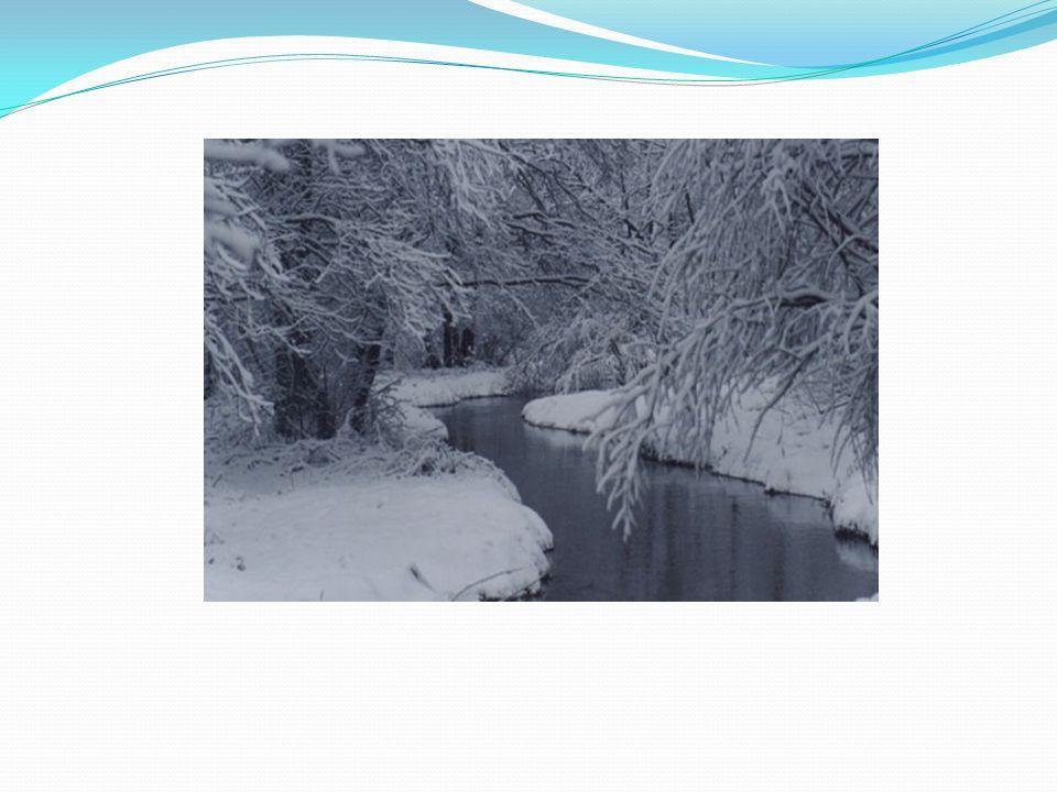 Wir können eine Schneeballschlacht machen Кататься на санках Играть в снежки Зима Кататься на лыжах Идет снег Играть в хоккей Не особенно холодно