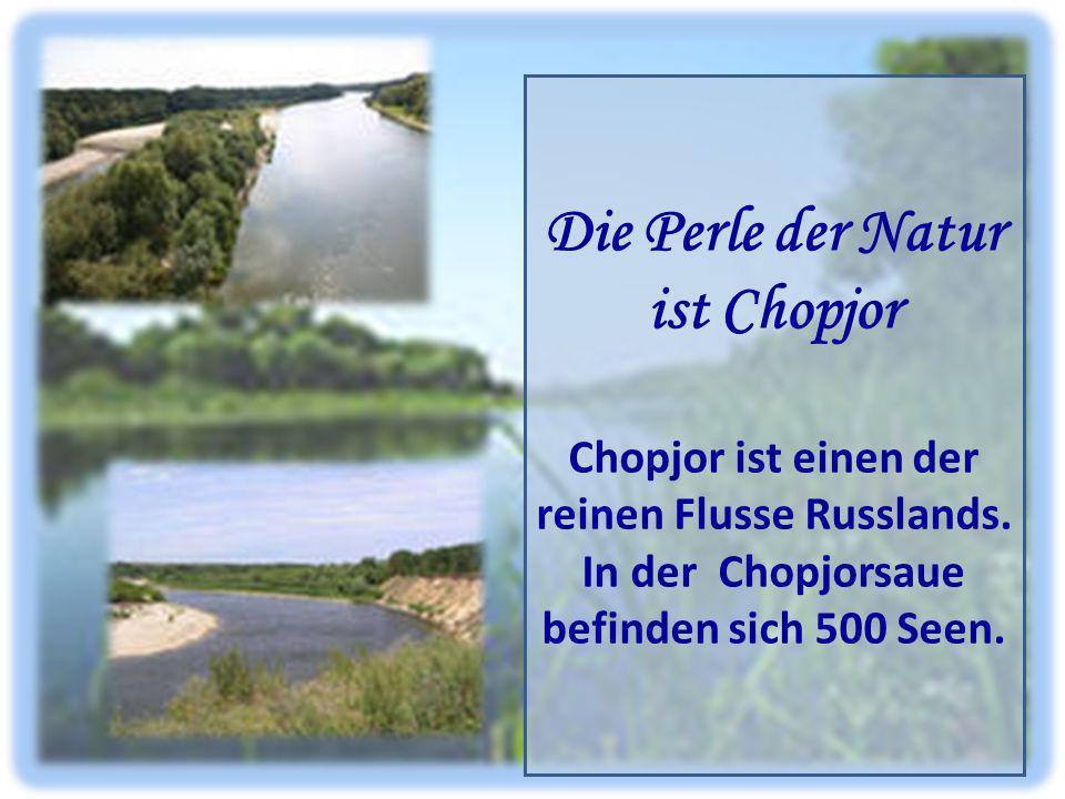 Die Perle der Natur ist Chopjor Chopjor ist einen der reinen Flusse Russlands. In der Chopjorsaue befinden sich 500 Seen.