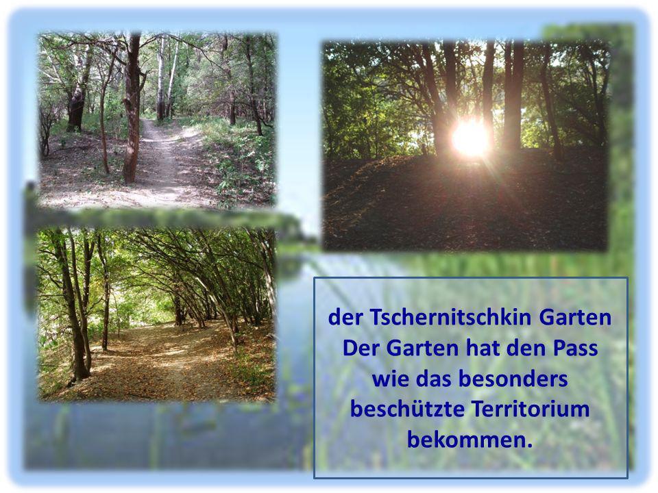 der Tschernitschkin Garten Der Garten hat den Pass wie das besonders beschützte Territorium bekommen.
