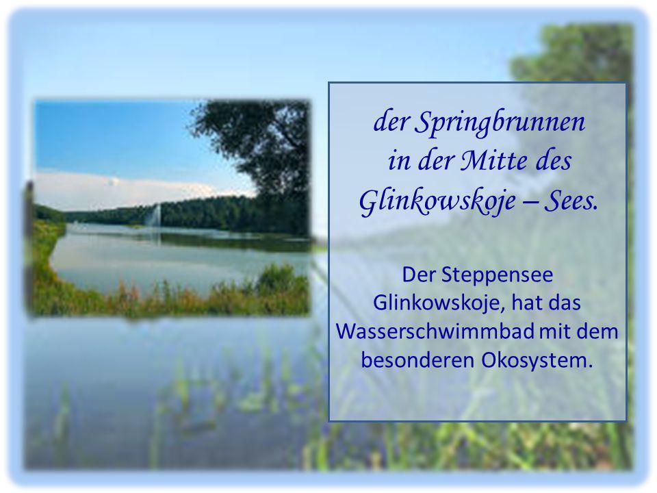 der Springbrunnen in der Mitte des Glinkowskoje – Sees. Der Steppensee Glinkowskoje, hat das Wasserschwimmbad mit dem besonderen Okosystem.