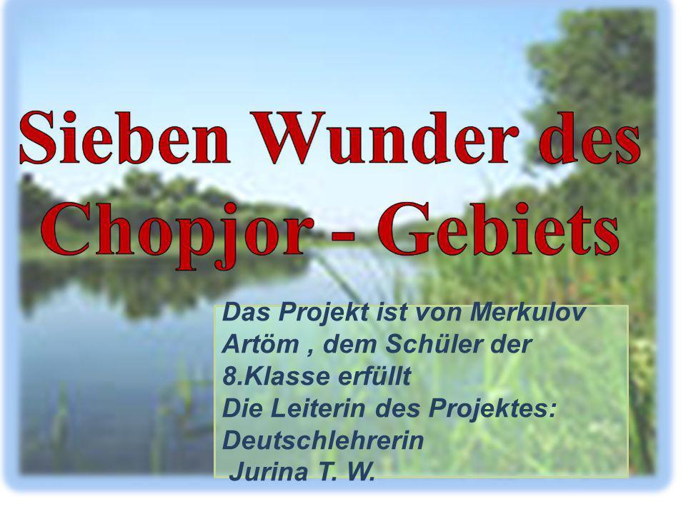Das Projekt ist von Merkulov Artöm, dem Schüler der 8.Klasse erfüllt Die Leiterin des Projektes: Deutschlehrerin Jurina T. W.
