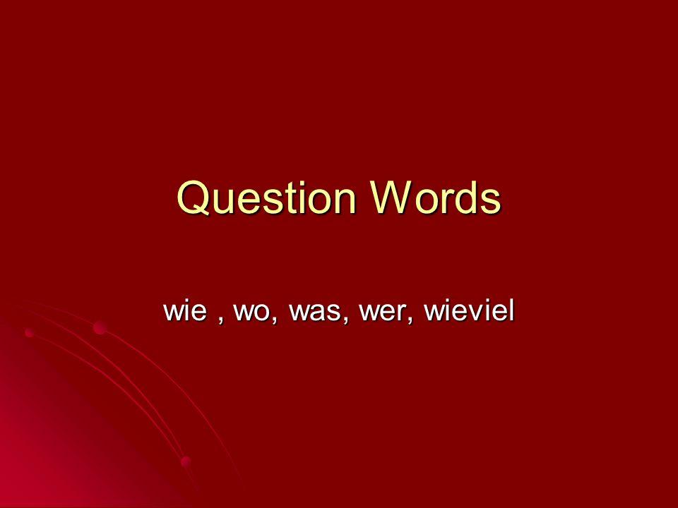 Question Words wie, wo, was, wer, wieviel