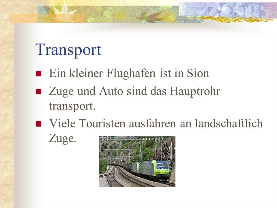 Transport Ein kleiner Flughafen ist in Sion Zuge und Auto sind das Hauptrohr transport.