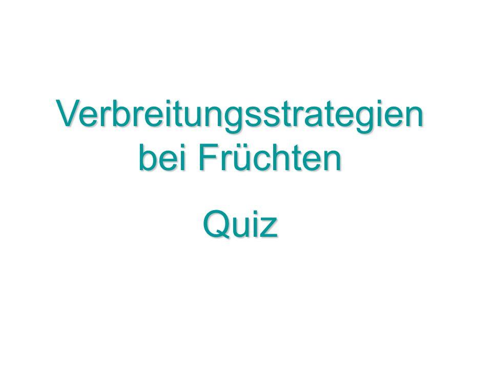 Verbreitungsstrategien bei Früchten Quiz