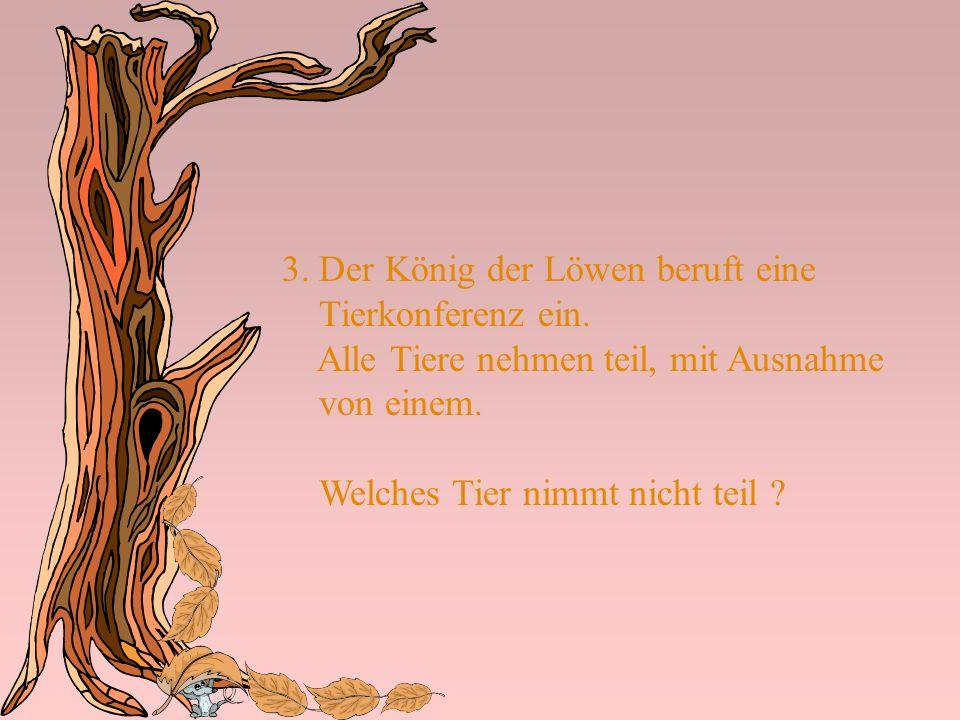 3. Der König der Löwen beruft eine Tierkonferenz ein. Alle Tiere nehmen teil, mit Ausnahme von einem. Welches Tier nimmt nicht teil ?
