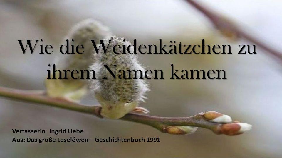 Wie die Weidenkätzchen zu ihrem Namen kamen Verfasserin Ingrid Uebe Aus: Das große Leselöwen – Geschichtenbuch 1991
