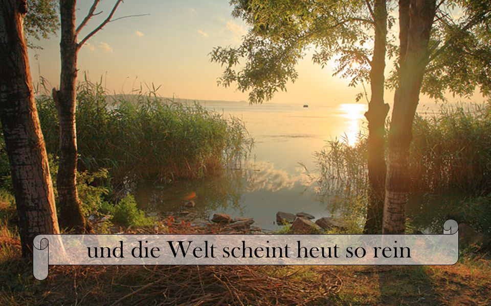 http://UteSchuster.mystorys.de Geschrieben von Ute AnneMarie Schuster