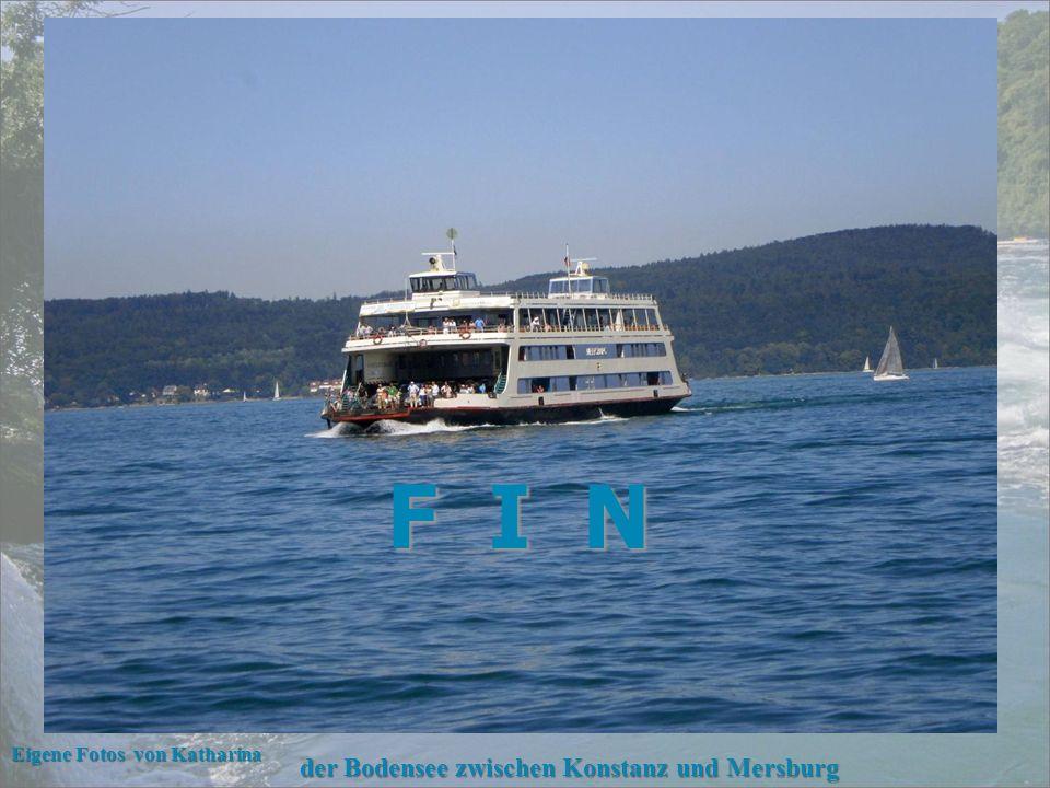 Blick zum Schlössli Wörth mit dem Rhein