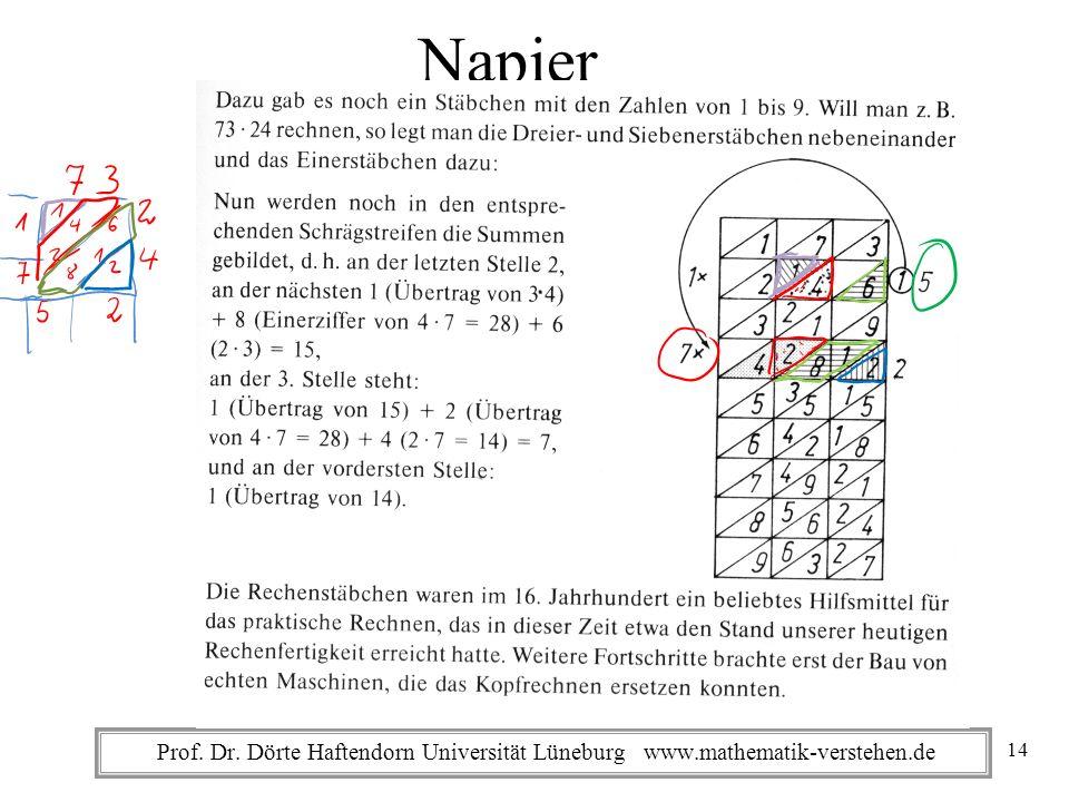Prof. Dr. Dörte Haftendorn Universität Lüneburg www.mathematik-verstehen.de Napier 14