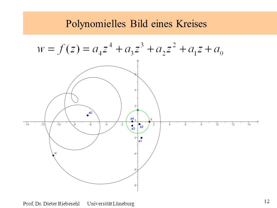 12 Prof. Dr. Dieter Riebesehl Universität Lüneburg Polynomielles Bild eines Kreises