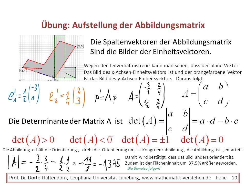 Übung: Aufstellung der Abbildungsmatrix Prof. Dr. Dörte Haftendorn, Leuphana Universität Lüneburg, www.mathematik-verstehen.de Folie 10 Die Spaltenvek