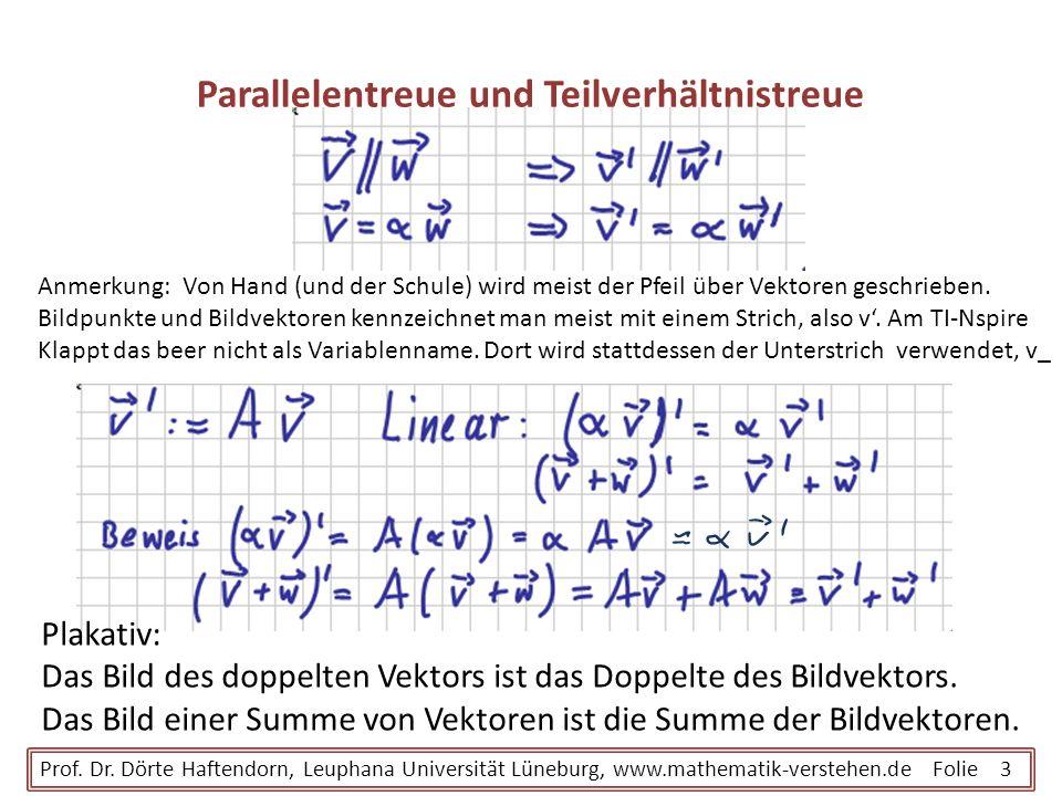 Parallelentreue und Teilverhältnistreue Prof. Dr. Dörte Haftendorn, Leuphana Universität Lüneburg, www.mathematik-verstehen.de Folie 3 Anmerkung: Von