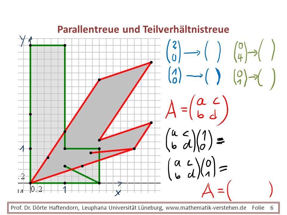 Parallentreue und Teilverhältnistreue Prof. Dr. Dörte Haftendorn, Leuphana Universität Lüneburg, www.mathematik-verstehen.de Folie 6