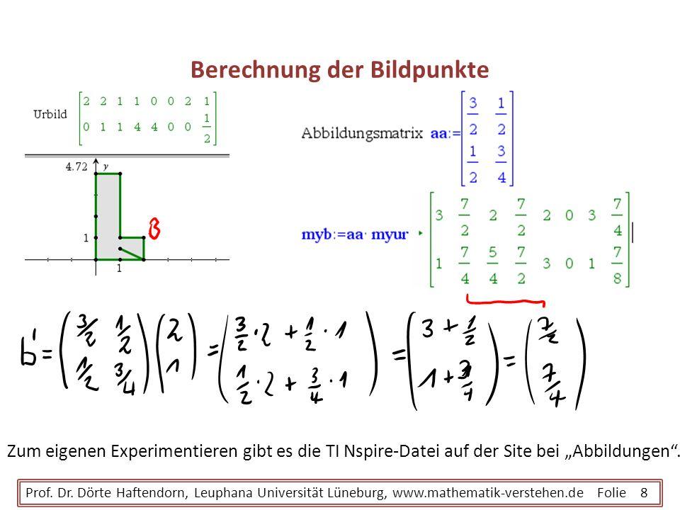 Berechnung der Bildpunkte Prof. Dr. Dörte Haftendorn, Leuphana Universität Lüneburg, www.mathematik-verstehen.de Folie 8 Zum eigenen Experimentieren g