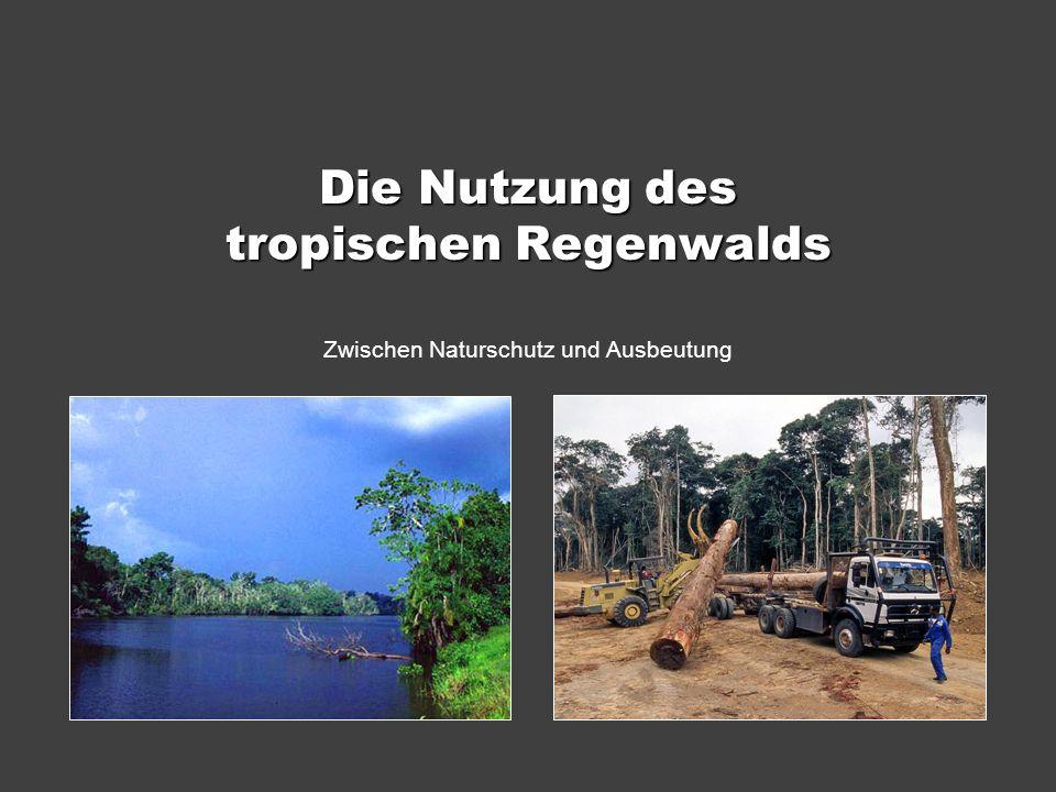 Die Nutzung des tropischen Regenwalds Zwischen Naturschutz und Ausbeutung
