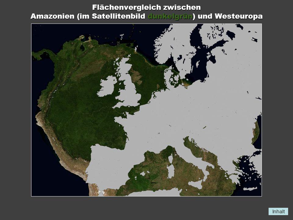 Inhalt Flächenvergleich zwischen Amazonien (im Satellitenbild dunkelgrün) und Westeuropa