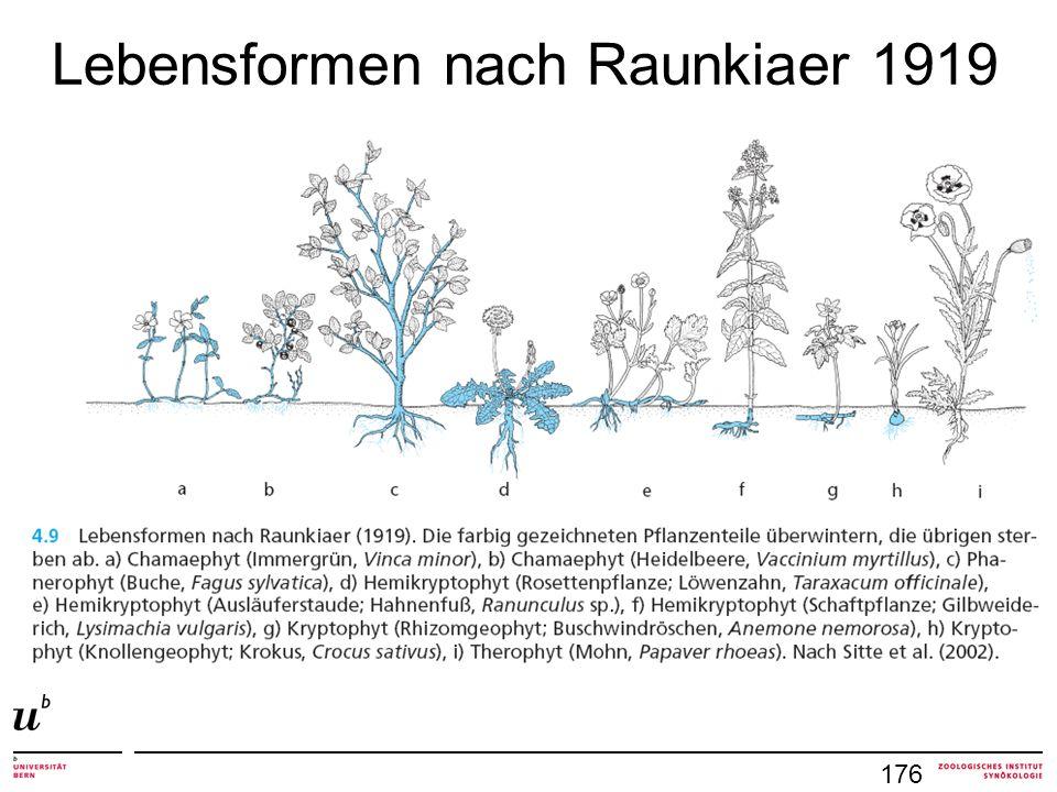 Lebensformen nach Raunkiaer 1919 176