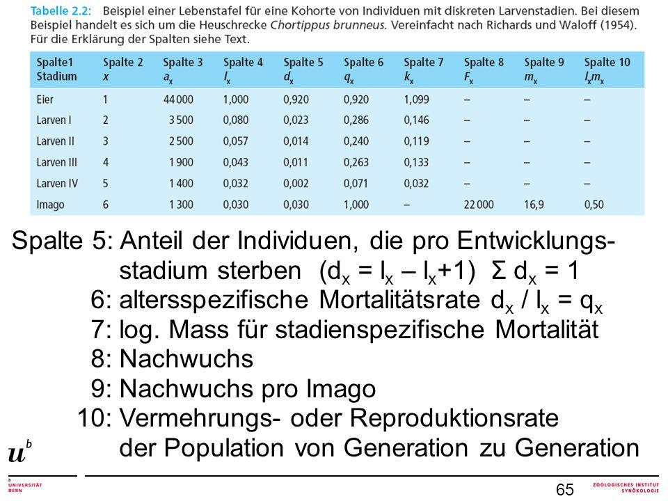 Spalte 5: Anteil der Individuen, die pro Entwicklungs- stadium sterben (d x = l x – l x +1) Σ d x = 1 6: altersspezifische Mortalitätsrate d x / l x =