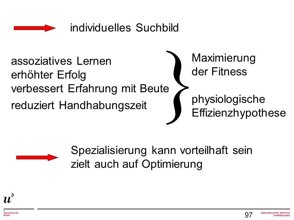 97 assoziatives Lernen erhöhter Erfolg verbessert Erfahrung mit Beute reduziert Handhabungszeit } Maximierung der Fitness physiologische Effizienzhypo